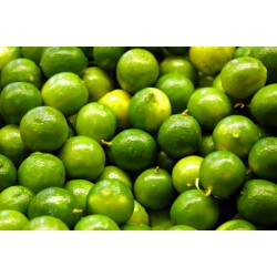 Limone Lime