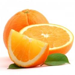 Arancio Tarocco